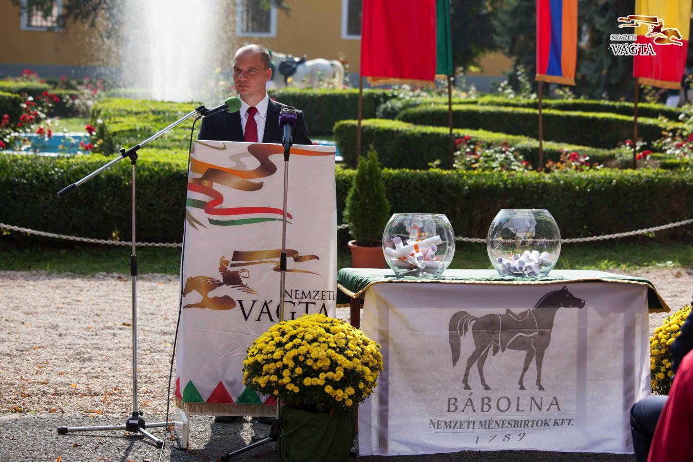 Klasszis lovak versenyeztek a PreVital Nemzetközi Futamban