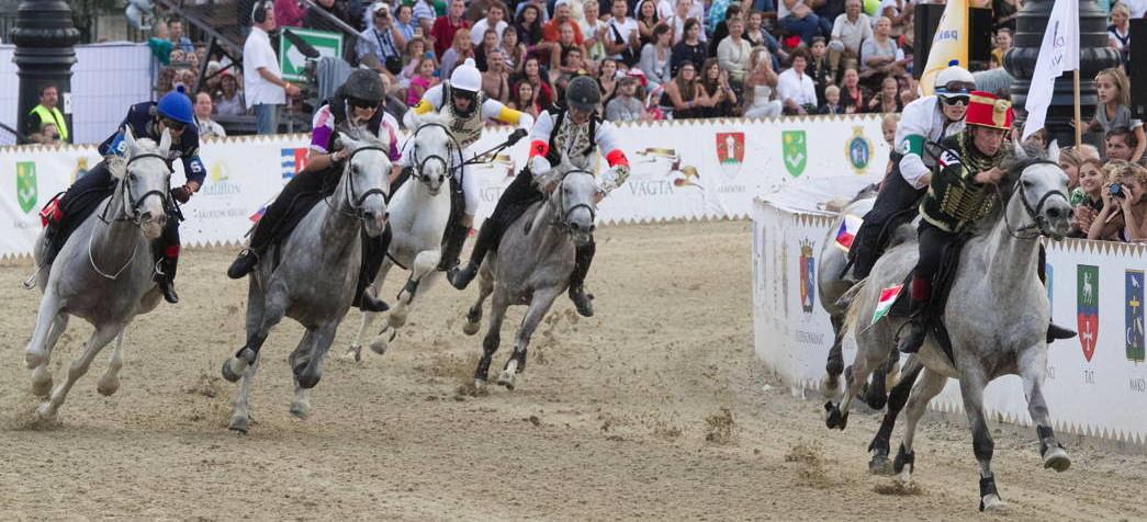 12 ország legjobb lovasai a PreVital Nemzetközi Futamon