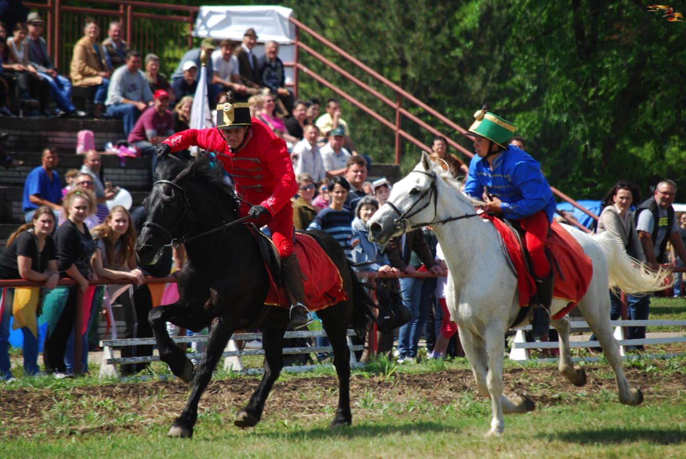Keresik a legjobb vajdasági lovasokat